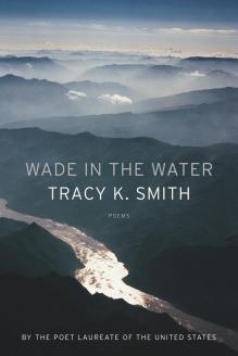 wadeinthewater